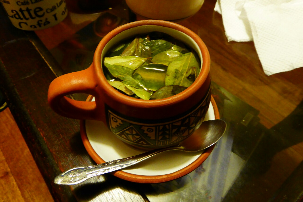 Coca Leaf tea Altitude Sickness